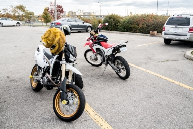 Two Dancing DRZ's